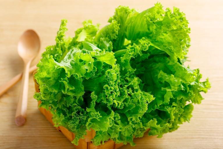 維生素U可從十字花科蔬菜攝取