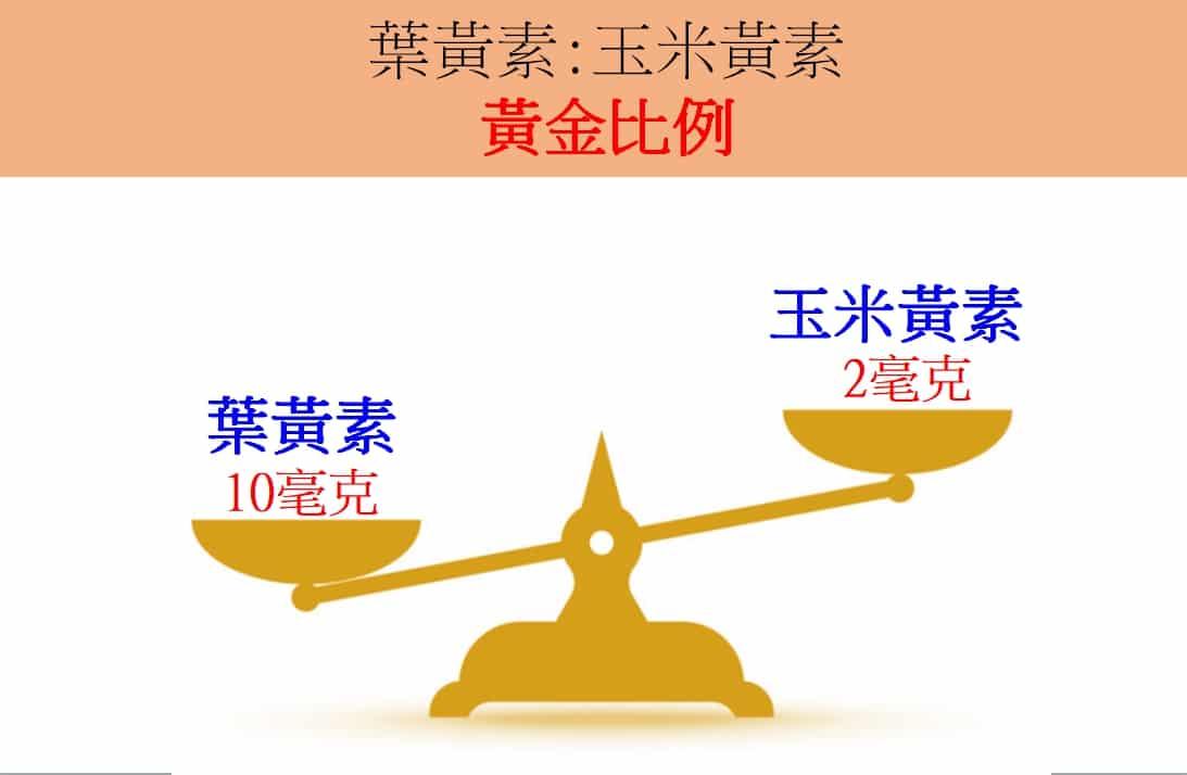 葉黃素玉米黃素黃金比例5:2