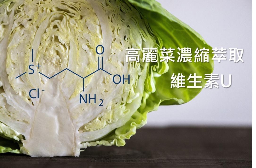 高麗菜營養濃縮精華 維生素U是什麼?功效、吃法一次告訴你
